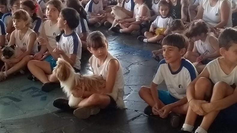 Benção dos Animais 3